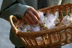 2只鸟种子投掷婚礼 免版税库存照片