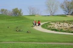 2名打高尔夫球的妇女 免版税库存图片