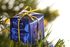 2圣诞树 图库摄影