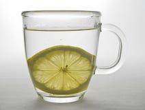 2块玻璃柠檬杯子片式 库存照片