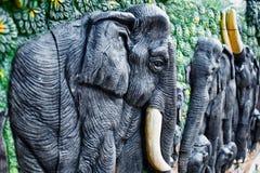 2头大象没有 免版税库存图片