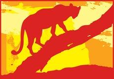 2头豹子结构树 免版税库存照片
