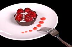 2奶油甜点rasberry馅饼 免版税库存照片