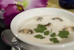 2奶油色蘑菇汤 免版税库存图片