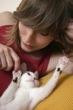 2嬉戏的小猫 库存照片