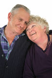 2对夫妇愉快的前辈 库存图片