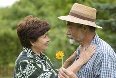 2对夫妇浪漫前辈 免版税库存照片
