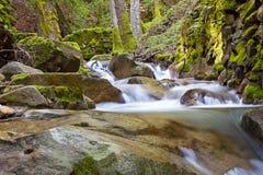 2峡谷uvas瀑布 免版税库存照片