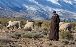2巴巴里人摩洛哥人 免版税库存照片