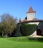 2座城堡塔 库存照片