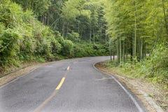 2座山路 库存图片