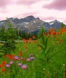 2座banff山 免版税库存照片