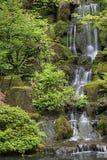 2庭院日本人瀑布 免版税库存照片