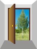 2开放的门 免版税图库摄影