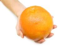 2成熟的葡萄柚 库存照片