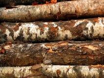 2把锯木材 免版税库存照片