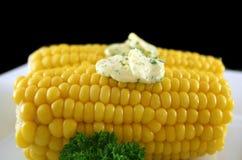 2新鲜的玉米 图库摄影