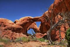 2曲拱停止的结构树 库存图片