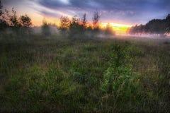 2有雾的日落 免版税库存照片