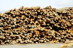 2木料处理 免版税库存图片