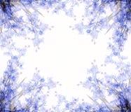 2朵抽象花框架照片 免版税库存照片