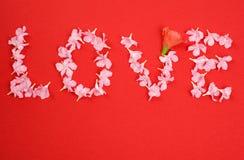 2朵花爱做的字 库存图片