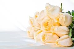 2朵香槟玫瑰 库存图片