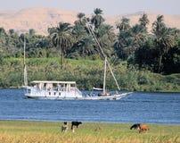 2条小船埃及航行 免版税库存照片