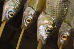 2条烤详细资料鱼 库存图片