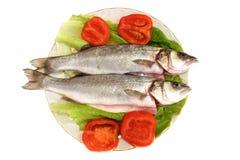 2条盘鱼 免版税图库摄影