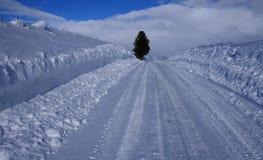 2条路农村冬天 图库摄影