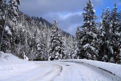 2条路冬天 库存图片