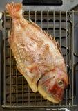 2条鱼格栅 库存图片