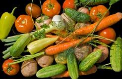 2棵堆蔬菜 图库摄影