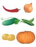 2棵收集蔬菜 免版税库存照片