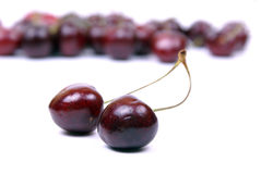 2棵樱桃查出的红色甜点 免版税库存图片