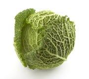 2棵特写镜头蔬菜 免版税库存图片
