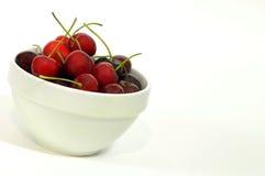 2棵碗樱桃 免版税库存图片