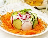 2棵红萝卜新鲜的沙拉 免版税库存照片
