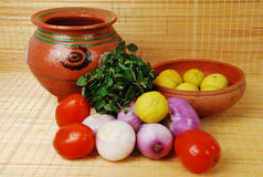 2棵蔬菜 免版税图库摄影