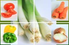2棵蔬菜 图库摄影