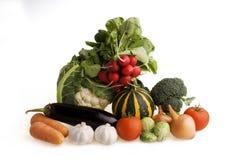 2棵蔬菜 库存图片