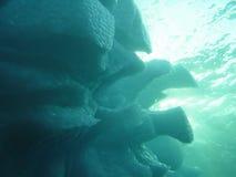 2水下的冰山 免版税库存照片