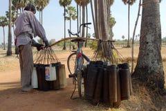 2油棕榈树 免版税库存照片