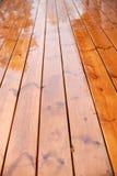 2湿的大阳台 免版税图库摄影