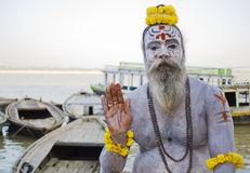 2灰包括sadhu 免版税图库摄影