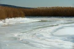 2片冻结的沼泽地冬天 库存照片