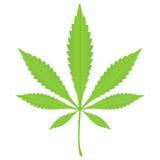2片叶子大麻 免版税库存图片