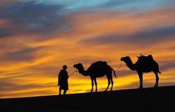 2片沙漠摩洛哥人 免版税库存照片
