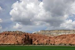 2片沙漠种田 库存照片